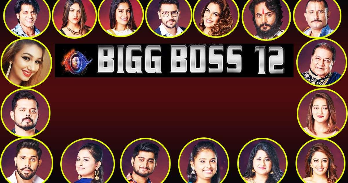 Contestant of Bigg Boss 12